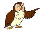 File:Little Bear Owl.png