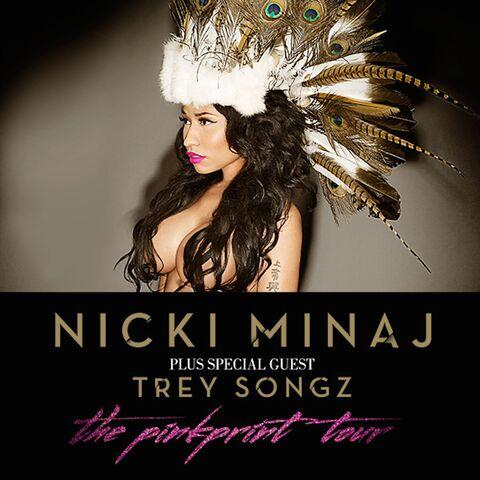 File:The PinkPrint Tour Poster.jpeg