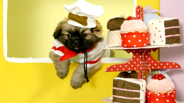 File:Nick Jr. Puppies Baker Pup.jpg