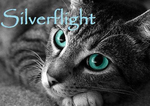 File:Silverflight.jpg