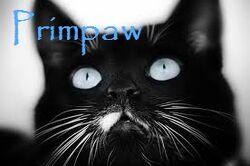 Primpaw
