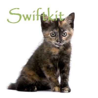 File:Swiftkit.jpg