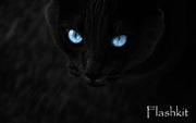 Flashkit