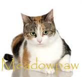 Mepaw