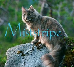 Miststripe