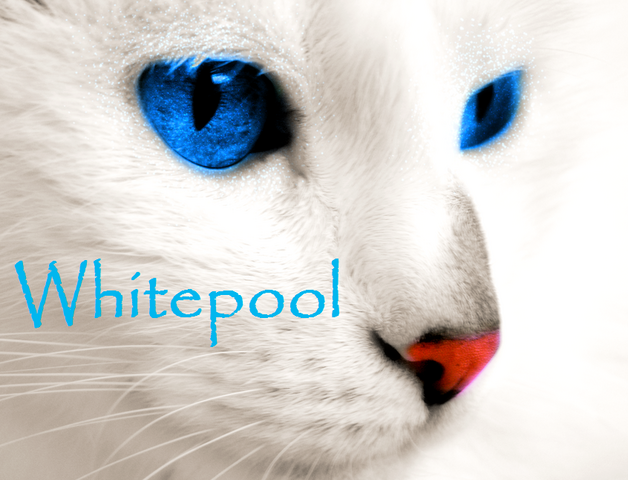 File:Whitepool.png
