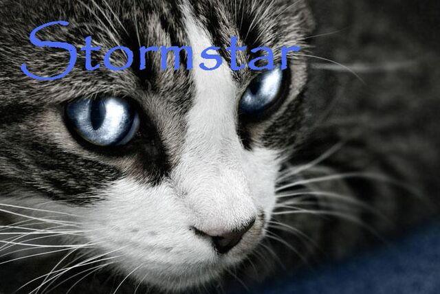 File:Stormstar.jpg