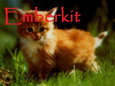 File:Emberkit.jpg