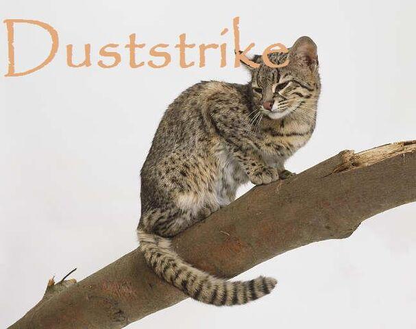 File:Duststrike.JPG