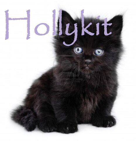 File:Hollykit.jpg