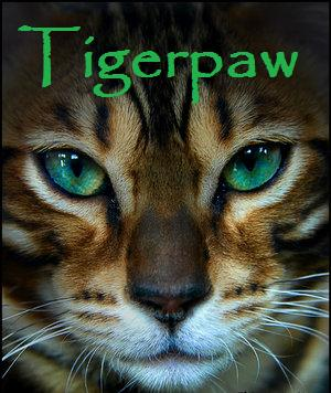 File:Tigerpaw.jpg