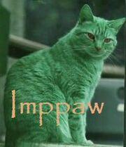 Imppaw