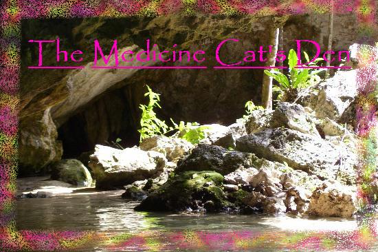 File:Medicine Cat's Den.jpg