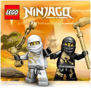 Ninjago icon