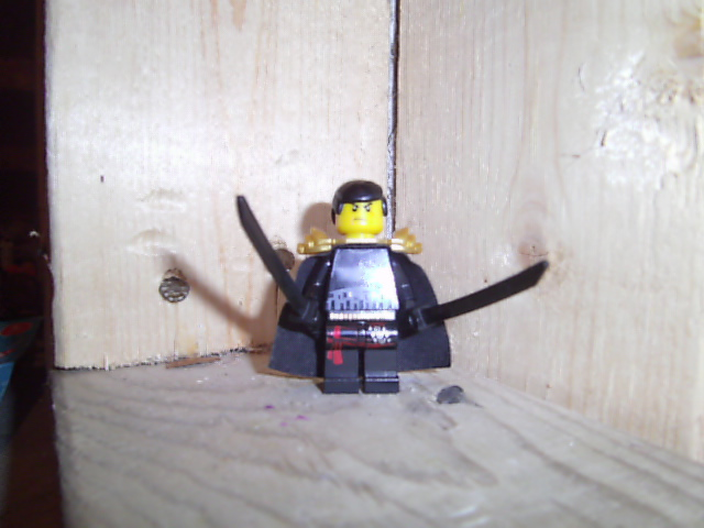 File:Black Ninja (3).JPG