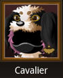 Cavalier (Clan)