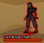 Ninja Thief - Female
