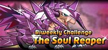 Soul Reaper Event