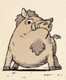037 sore boar