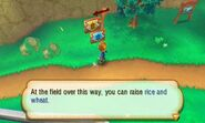 Story of Seasons screenshot 9
