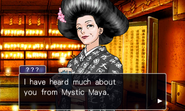 Phoenix Wright Ace Attorney Trilogy screenshot 18