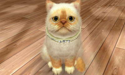 File:-Nintendogs Cats- Precious1.jpg