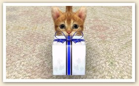 File:Cat with Present (2).jpg
