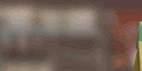 Natural Dog Food Bag