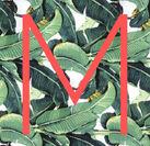M Pic