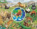 Miniatuurafbeelding voor de versie van 7 mei 2012 om 13:14