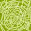 Trapdoor Spider Silk
