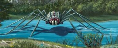 File:Giant Water Spider.jpg