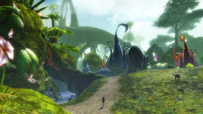 Guild Wars 2 No Hud