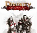 Divinity: Original Sin No Hud
