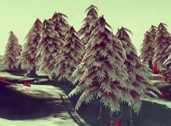 File:Pines.JPG