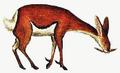 Picktooth