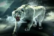 Alaskan Tiger