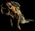 Shrimp (Female)
