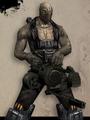 Brute (Resistance)