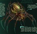 Broodmother lysrix