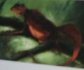 Alatusaurus sanguideia