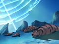 Tiger Seal Avatar