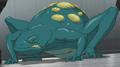 Frog EVO