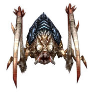 Scarab (Guild Wars)