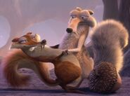Sabertoothed Squirrel