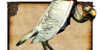Sea Vulture