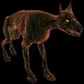 Hellhound (The Witcher)