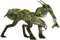 Mantis Hunter