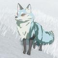 Snowcoat Fox
