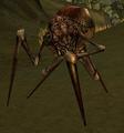 Dune Beetle Lance